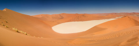 Panorama of the Dead Vlei salt pan. Namibia, Africa Royalty Free Stock Photography