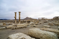 Panorama of the decumanus at Palmyra, Syria Royalty Free Stock Photos
