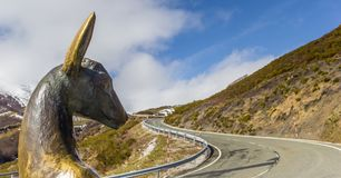 Panorama of a deer statue in Picos de Europa Stock Image
