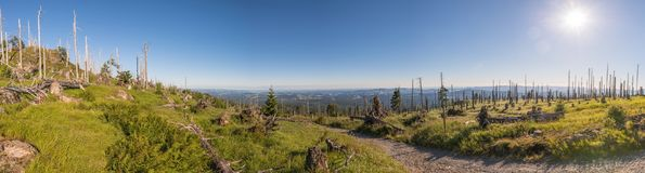 Panorama 180 degrees on the mountain of große Rachel in the Bavarian Forest, Germany Royalty Free Stock Photography