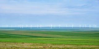 Panorama dei generatori eolici con gli strati dei giacimenti agricoli verdi della segale e del grano, sul cielo bluastro - spazio fotografia stock libera da diritti