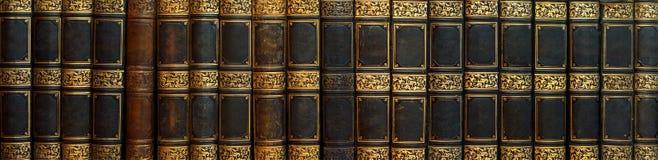 Panorama dei libri antichi sullo scaffale fotografie stock