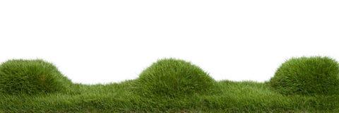 Panorama dei monticelli dell'erba Immagini Stock Libere da Diritti