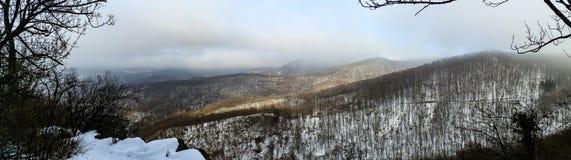 Panorama del bosque hermoso del invierno ocultado en niebla Foto de archivo libre de regalías