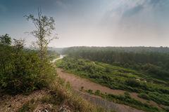 Panorama del bosque y del río del verano Imagen de archivo