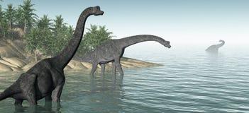 Panorama del Brachiosaurus Immagini Stock Libere da Diritti