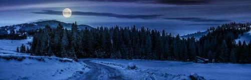 Panorama del camino nevoso a través del bosque spruce en montañas en el nig Fotos de archivo