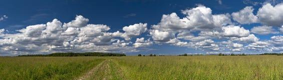 Panorama del campo Fotografia Stock