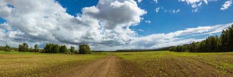 Panorama del campo agricolo nel giorno soleggiato di estate Fotografie Stock