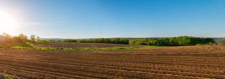 Panorama del campo agricolo nella primavera Fotografia Stock
