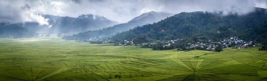 Panorama del campo del arroz del web de araña en Ruteng Fotos de archivo libres de regalías