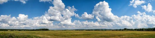 Panorama del campo e delle nuvole di estate Fotografia Stock Libera da Diritti