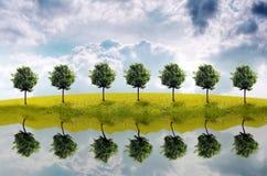 Panorama del campo verde Ilustración del Vector