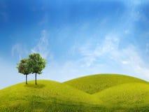 Panorama del campo verde con alberi illustrazione di stock