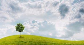Panorama del campo verde con un árbol Stock de ilustración