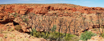 Panorama del Canyon del re Immagine Stock