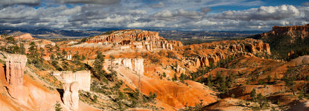Panorama del canyon di Bryce nella sera Fotografia Stock