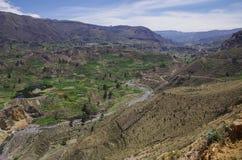 Panorama del canyon di Colca, Perù, Sudamerica Inche per costruire Farmin Fotografie Stock Libere da Diritti