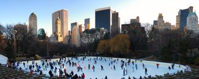 Panorama del Central Park Iceskate, New York City Fotografia Stock Libera da Diritti