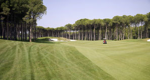 Panorama del club di golf Immagine Stock