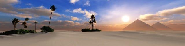 Panorama del desierto de la arena en la puesta del sol Foto de archivo libre de regalías