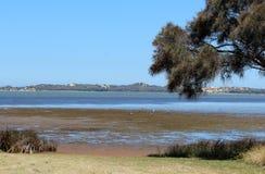 Panorama del estuario Bunbury Aust del oeste de Leschenault Imagen de archivo libre de regalías