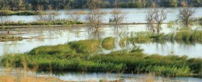 Panorama del fiume di autunno Fotografia Stock Libera da Diritti