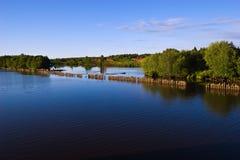 Panorama del fiume di Kovzha Immagine Stock