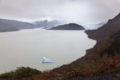 Panorama del ghiacciaio grigio Fotografie Stock
