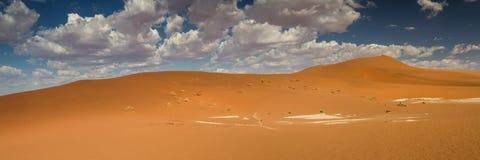 Panorama del giacimento della duna di Sossusvlei Fotografia Stock