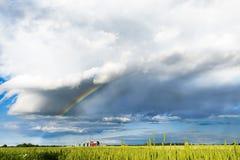 Panorama del giacimento della molla con l'arcobaleno Fotografia Stock