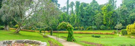 Panorama del giardino floreale fotografia stock libera da diritti