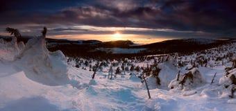 Panorama del invierno Imagenes de archivo