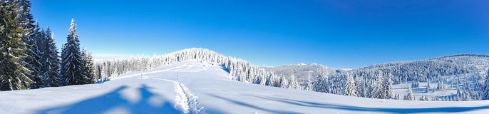 Panorama del invierno Imagen de archivo libre de regalías