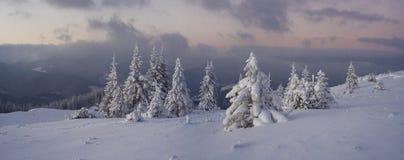 Panorama del invierno Fotos de archivo