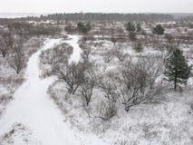 Panorama del invierno de la naturaleza Fotos de archivo
