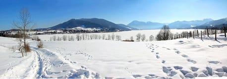 Panorama del invierno de Tegernsee Imagen de archivo