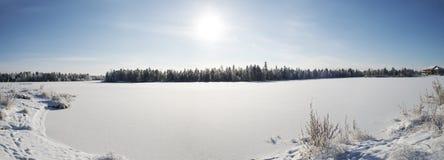 panorama del invierno del paisaje del bosque en el norte de R Imagenes de archivo