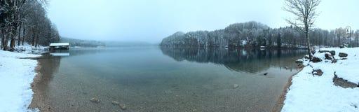 Panorama del lago Alpsee di inverno Immagine Stock Libera da Diritti