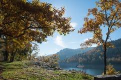 Panorama del lago alsaziano di Kruth Immagine Stock Libera da Diritti