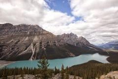 Panorama del lago del peyto fotografía de archivo libre de regalías