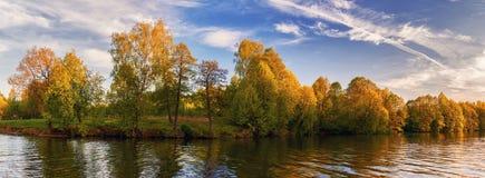 Panorama del lago del verano de la tarde con el bosque en fondo Imagen de archivo libre de regalías