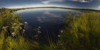 Panorama del lago della foresta in tempo calmo Immagini Stock Libere da Diritti
