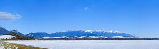 Panorama del lago di inverno Fotografia Stock Libera da Diritti