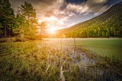 Panorama del lago Dobbiaco Fotografia Stock Libera da Diritti