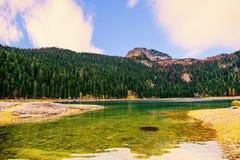 Panorama del lago nero (jezero) di Crno, Durmitor, Montenegro Fotografia Stock Libera da Diritti