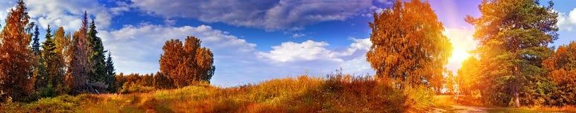 Panorama del otoño Foto de archivo libre de regalías