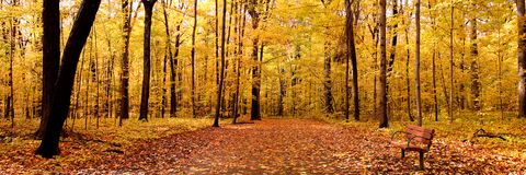 Panorama del otoño Foto de archivo