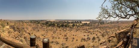 Panorama del paesaggio del deserto con il letto di fiume asciutto nel parco nazionale di Mapungubwe, Sudafrica Fotografie Stock Libere da Diritti