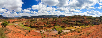 Panorama del paesaggio del Madagascar Immagine Stock Libera da Diritti